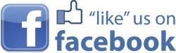 likeusonfacebook_icon